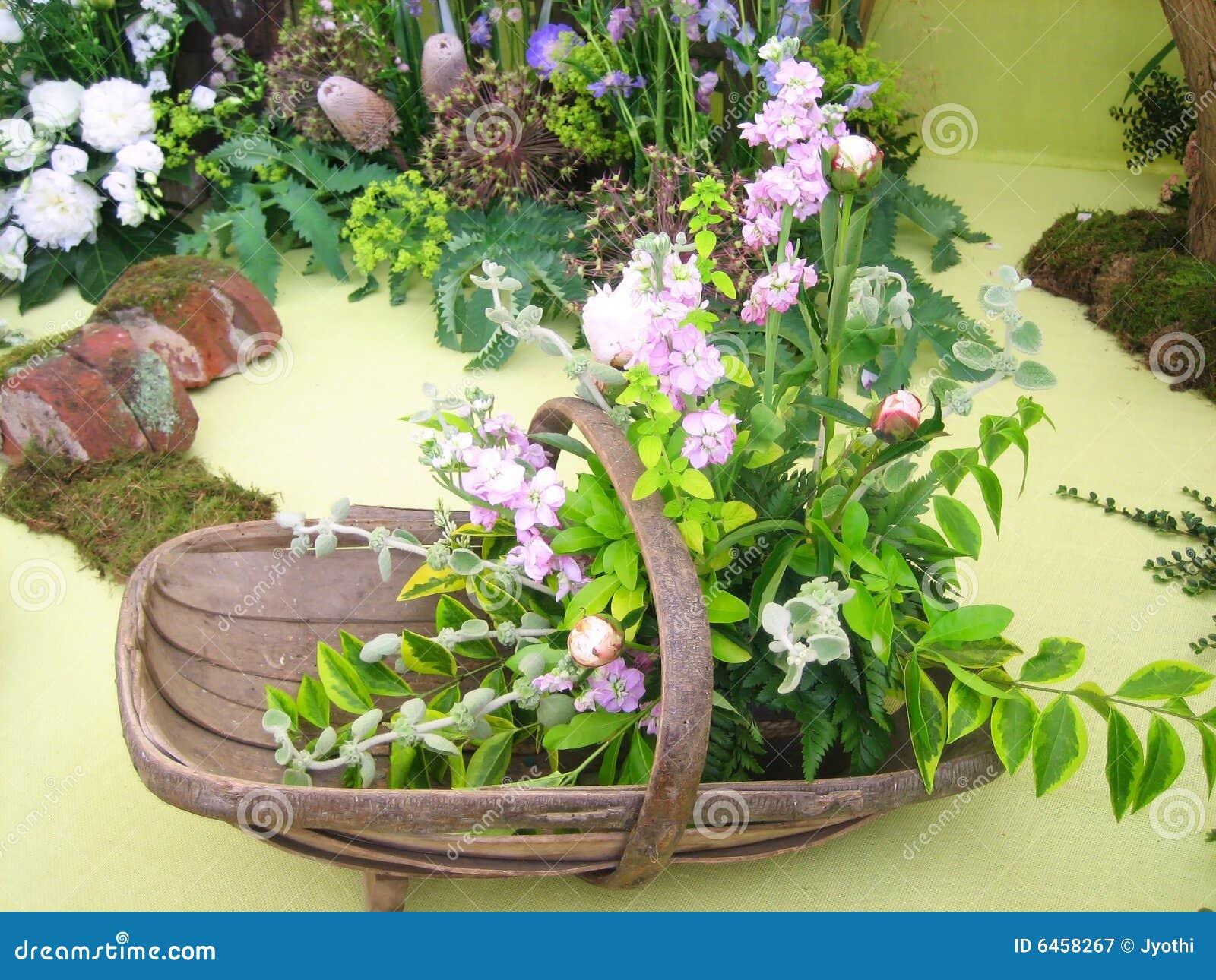 Preparaty kwiat
