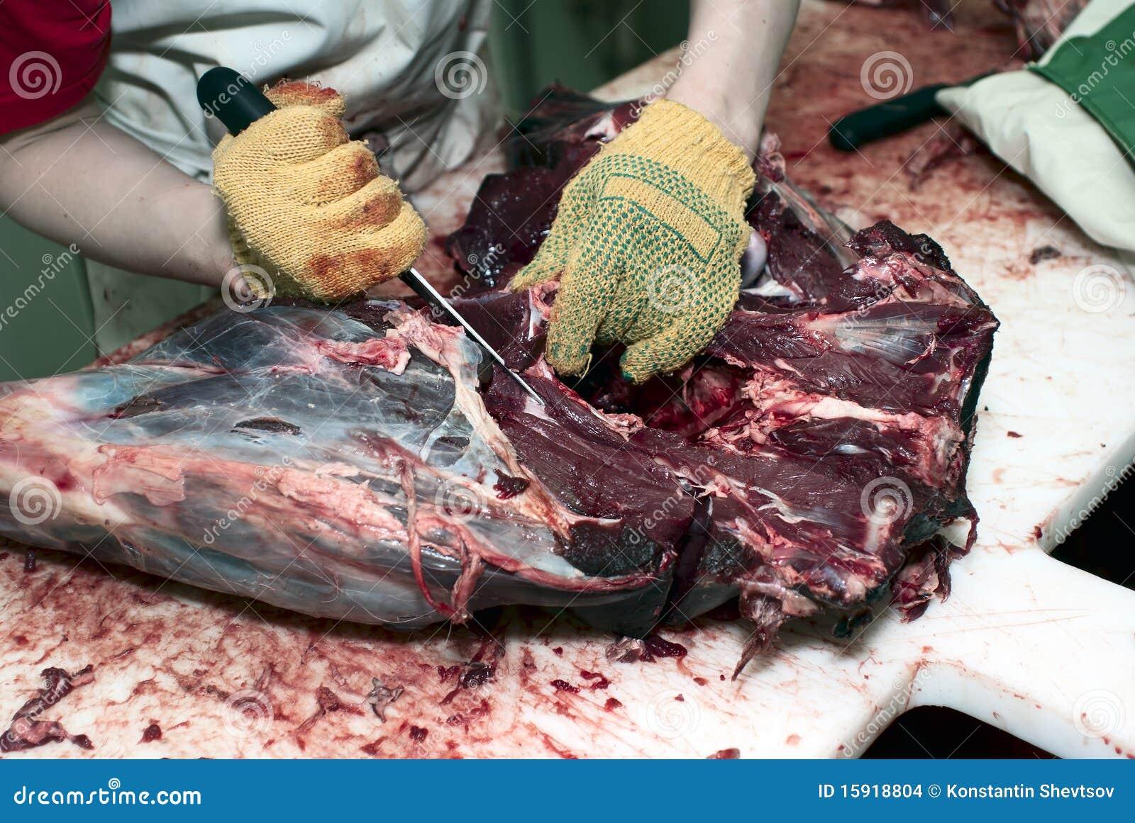 Preparazione della carcassa dei cervi