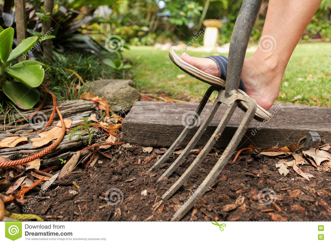 Preparing The Garden For Planting In Spring. Stock Photo - Image of ...