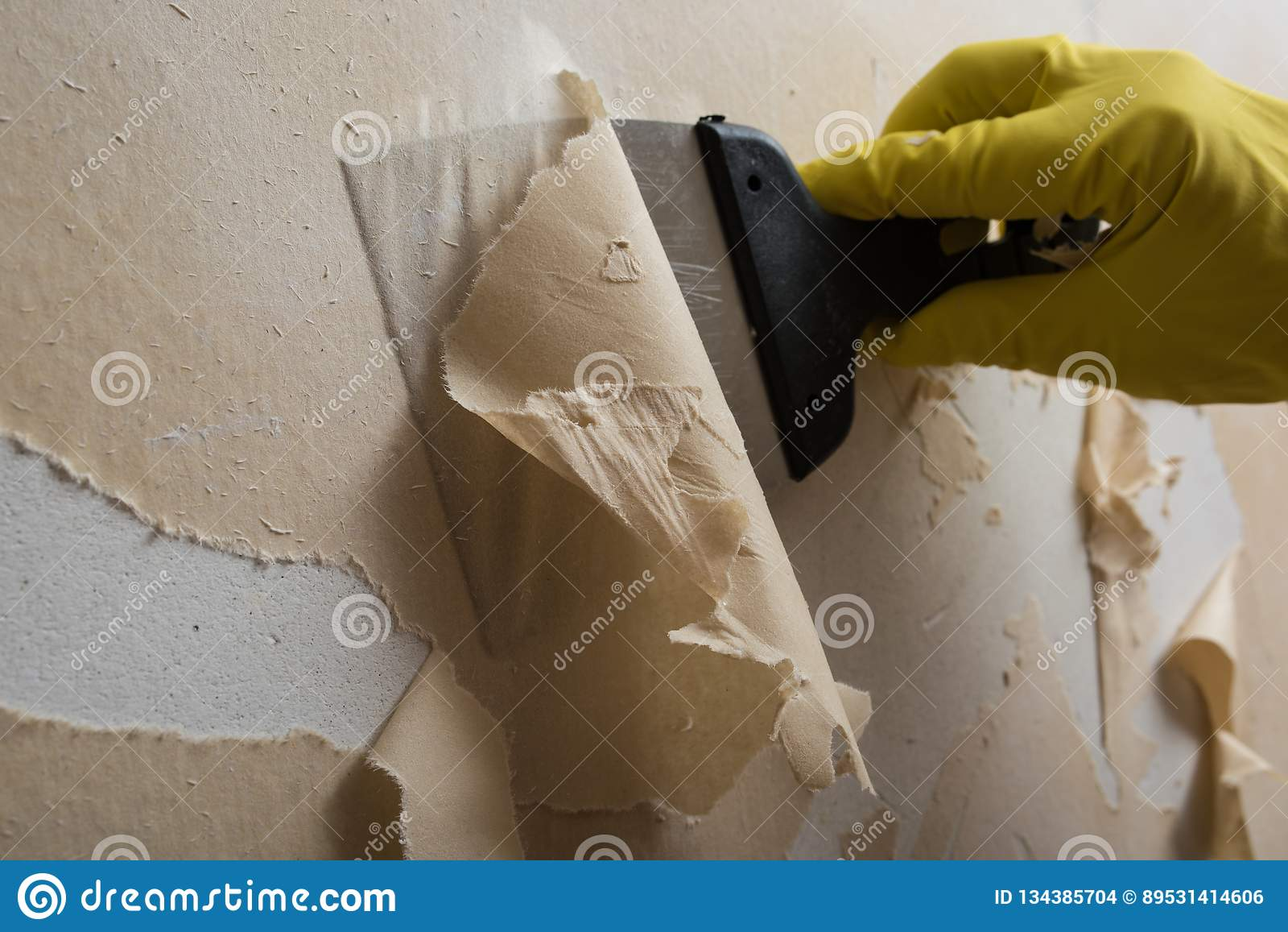 Cleaning The Wall From Old Wallpaper Stock Photo Image Of