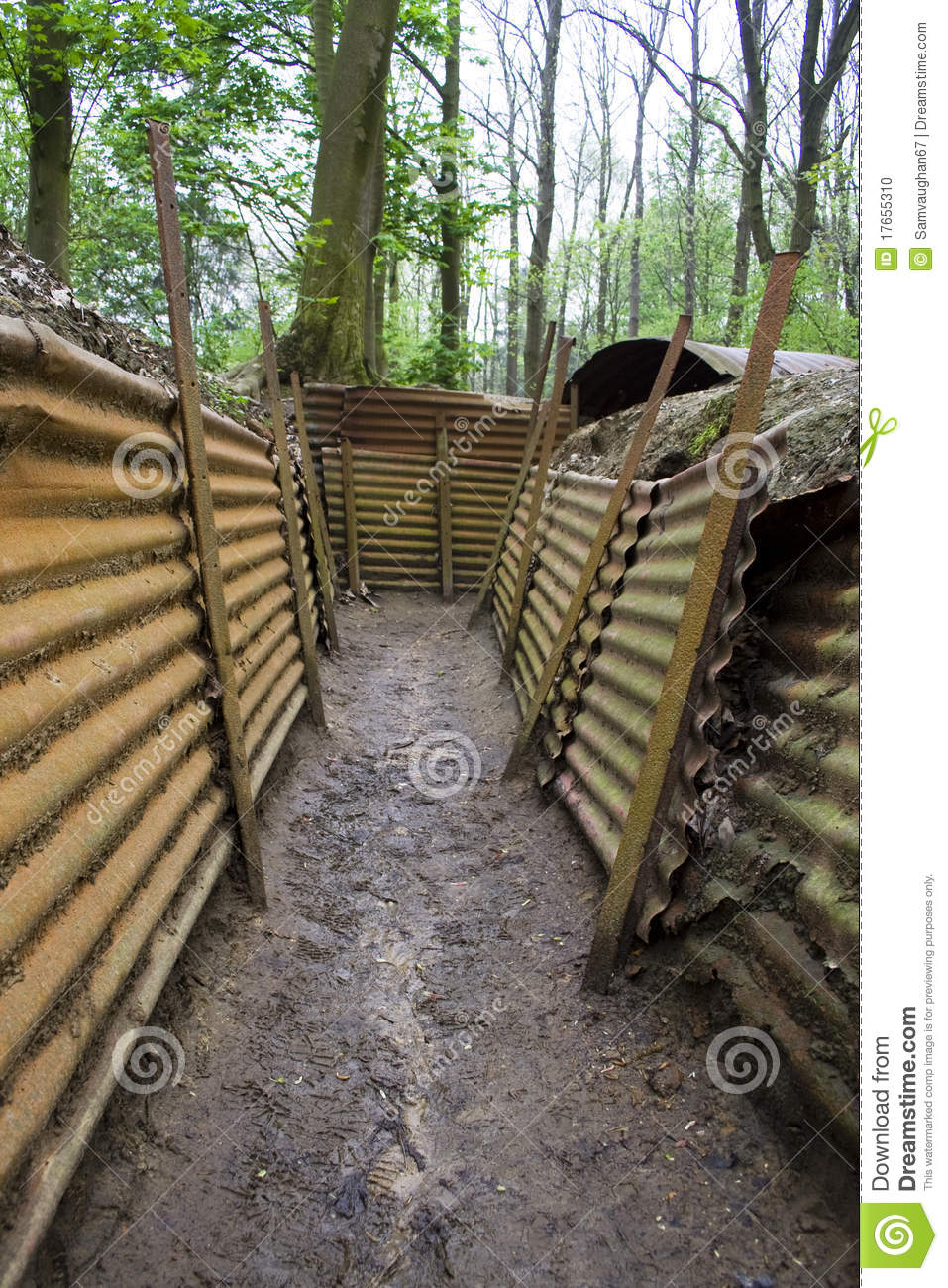 Preserved Trenches Of ...