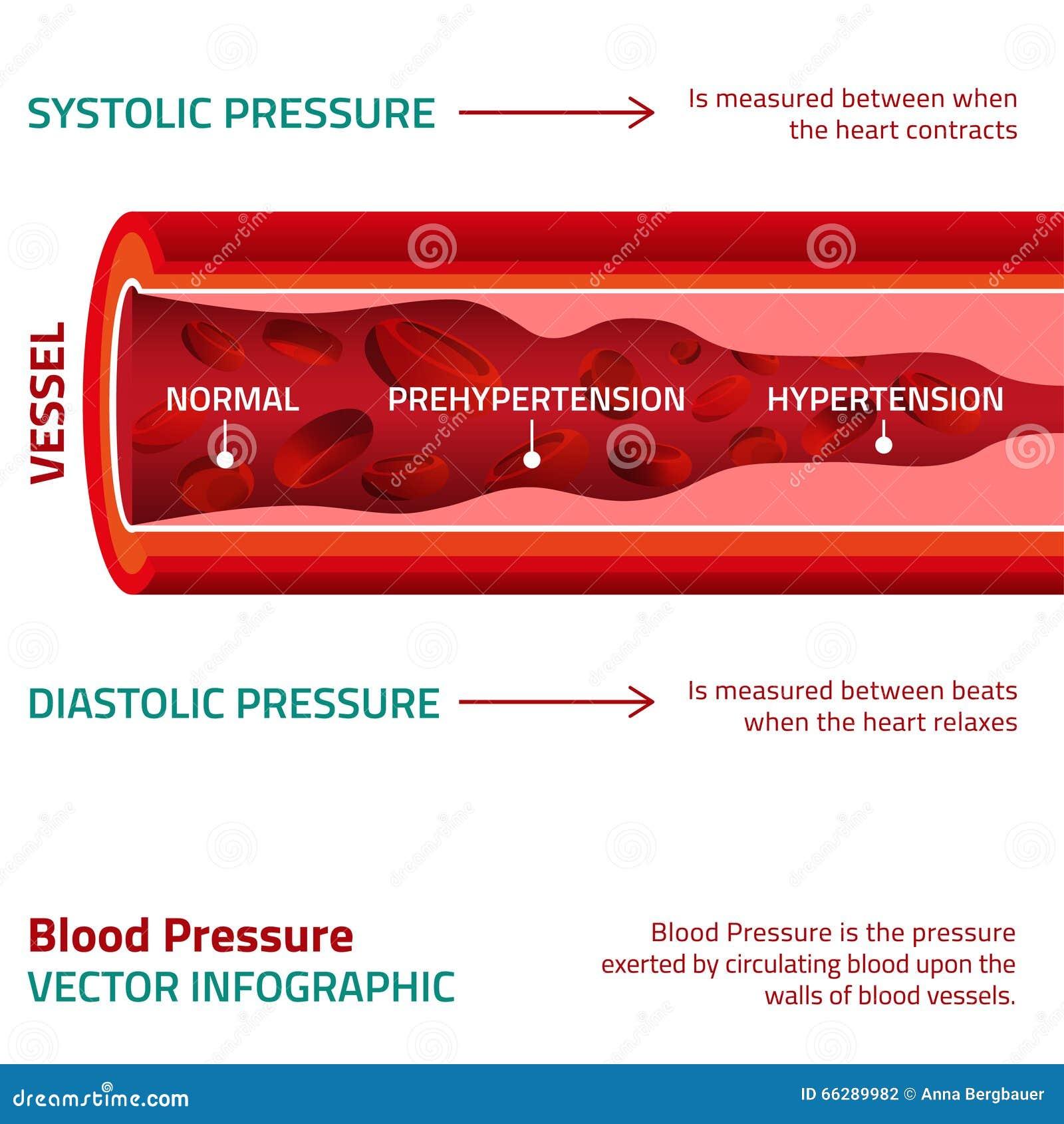 gráfico saludable de la presión arterial