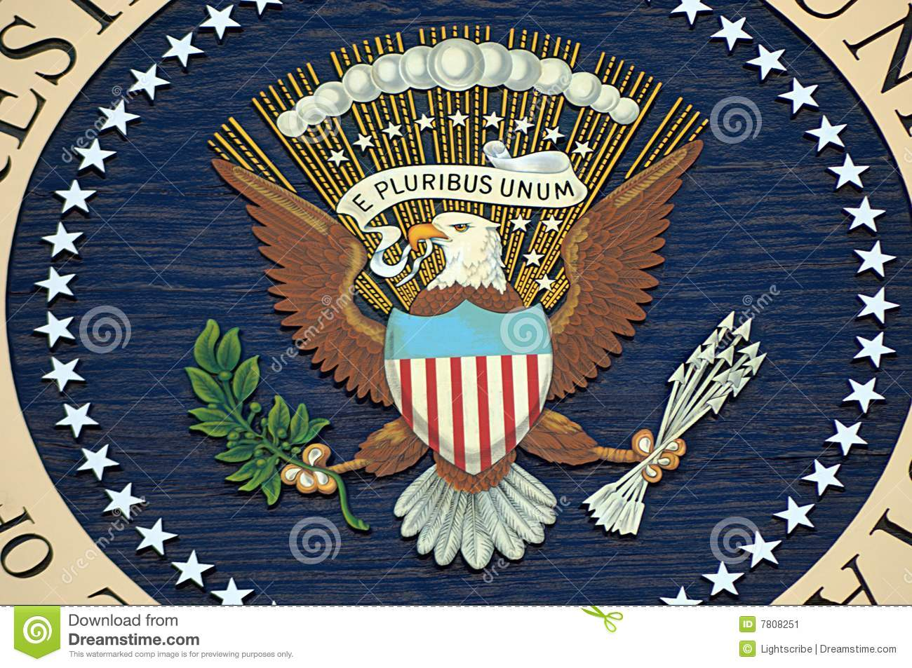 Resultado de imagem para picture of the american eagle with olives and arrows