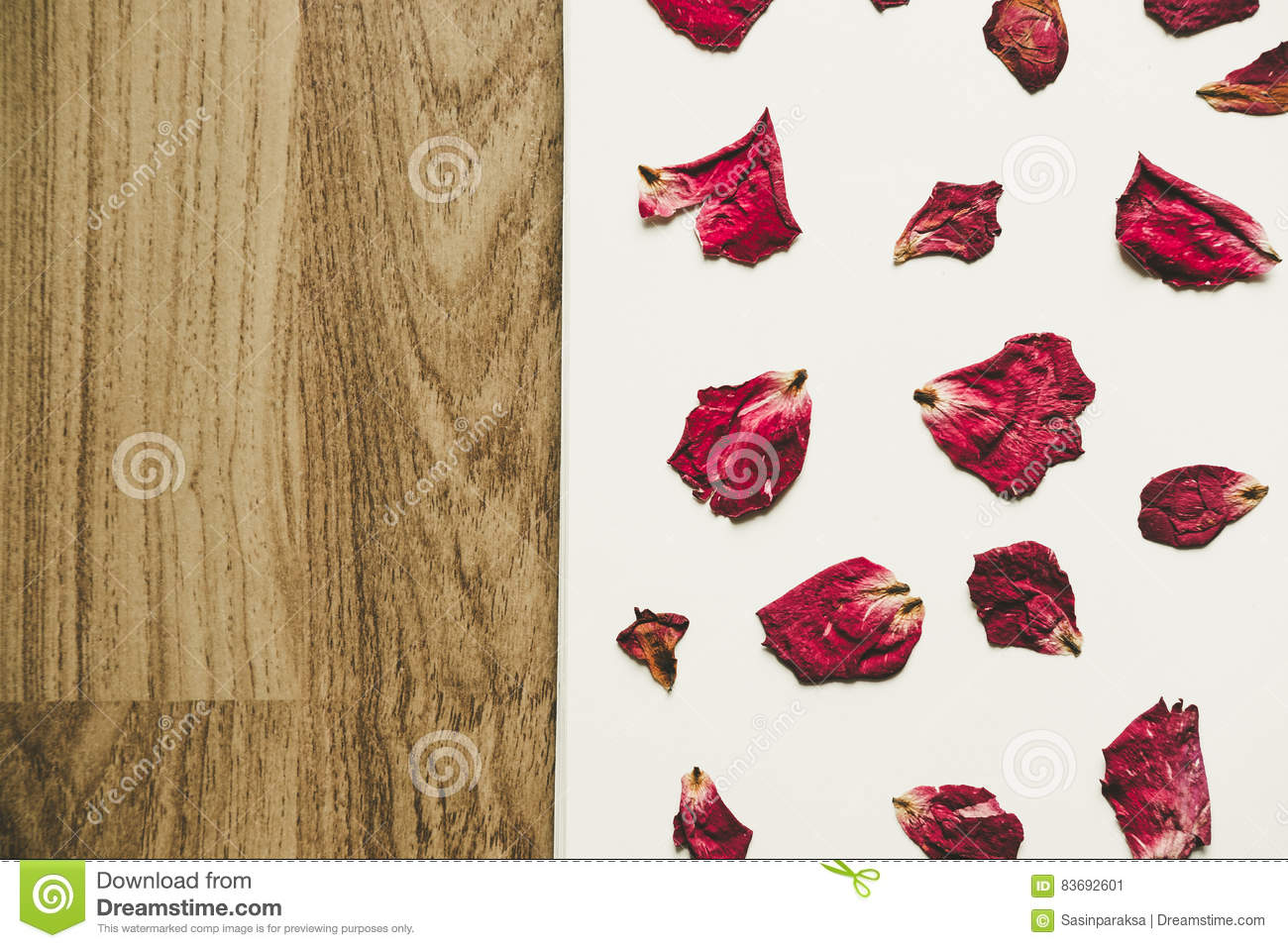 Press Dried Rose Flower With Petals On White Paper And Wood Floor