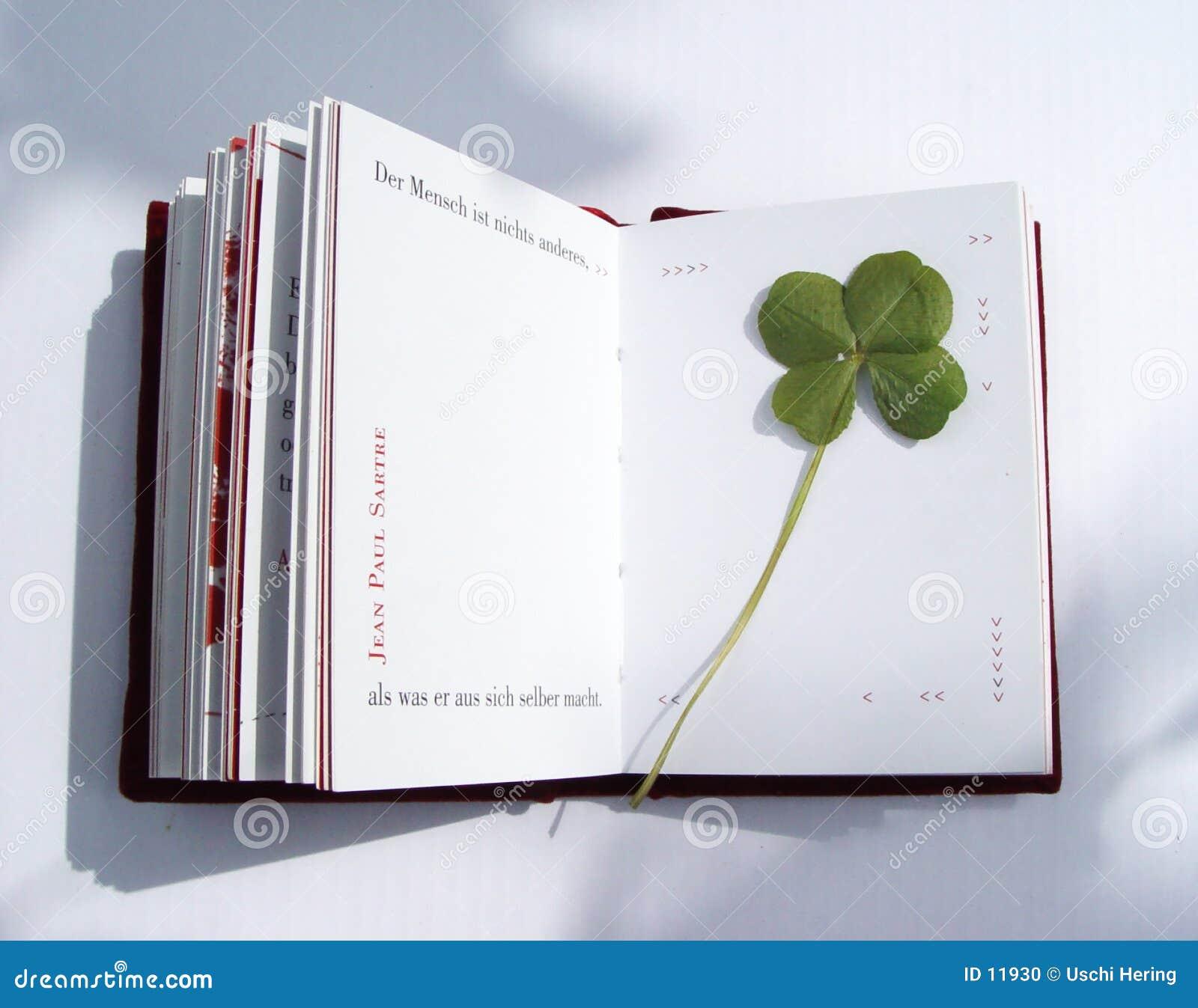 pressed 4-leaf-clover