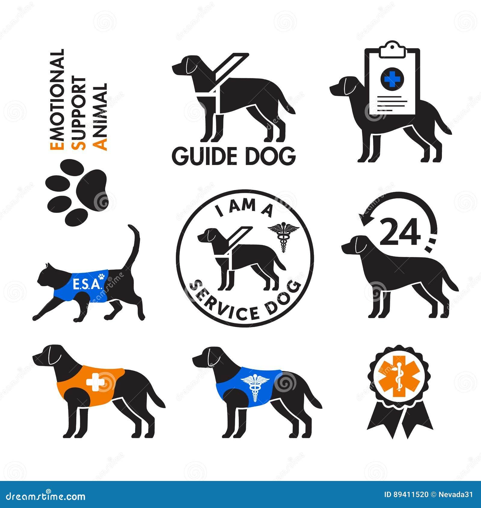 Preste serviços de manutenção a cães e a emblemas emocionais dos animais do apoio