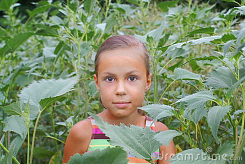 Preteen girl on grass Stock photo and royalty-free