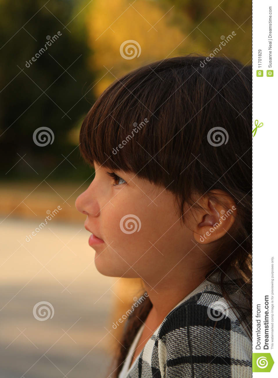 Pretty 6 Year Old Girl In Brunette Braids Stock Image