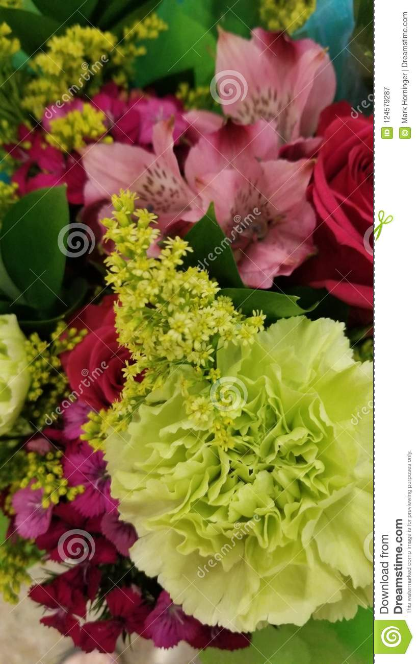 Beautiful Colorful Bunch Of Flowers Stock Image Image Of