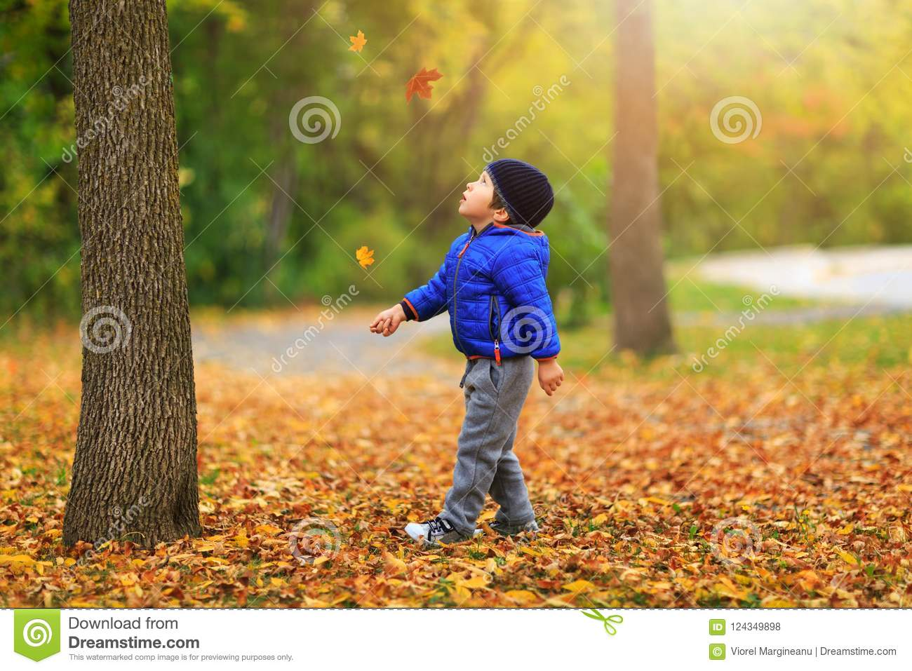 Pretty Boy Gathers A Golden Fall Leaf On Background Of