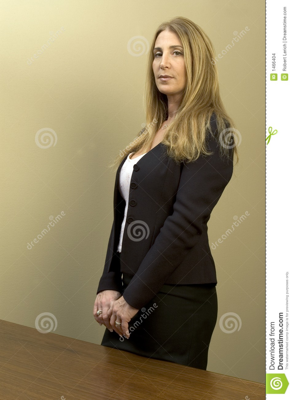Pretty Business Woman Stock Images Image 1466404