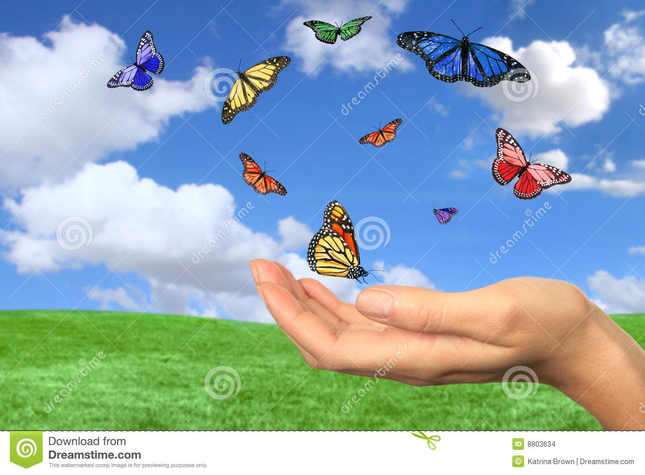 let your imagination fly creativity concept stock photo image
