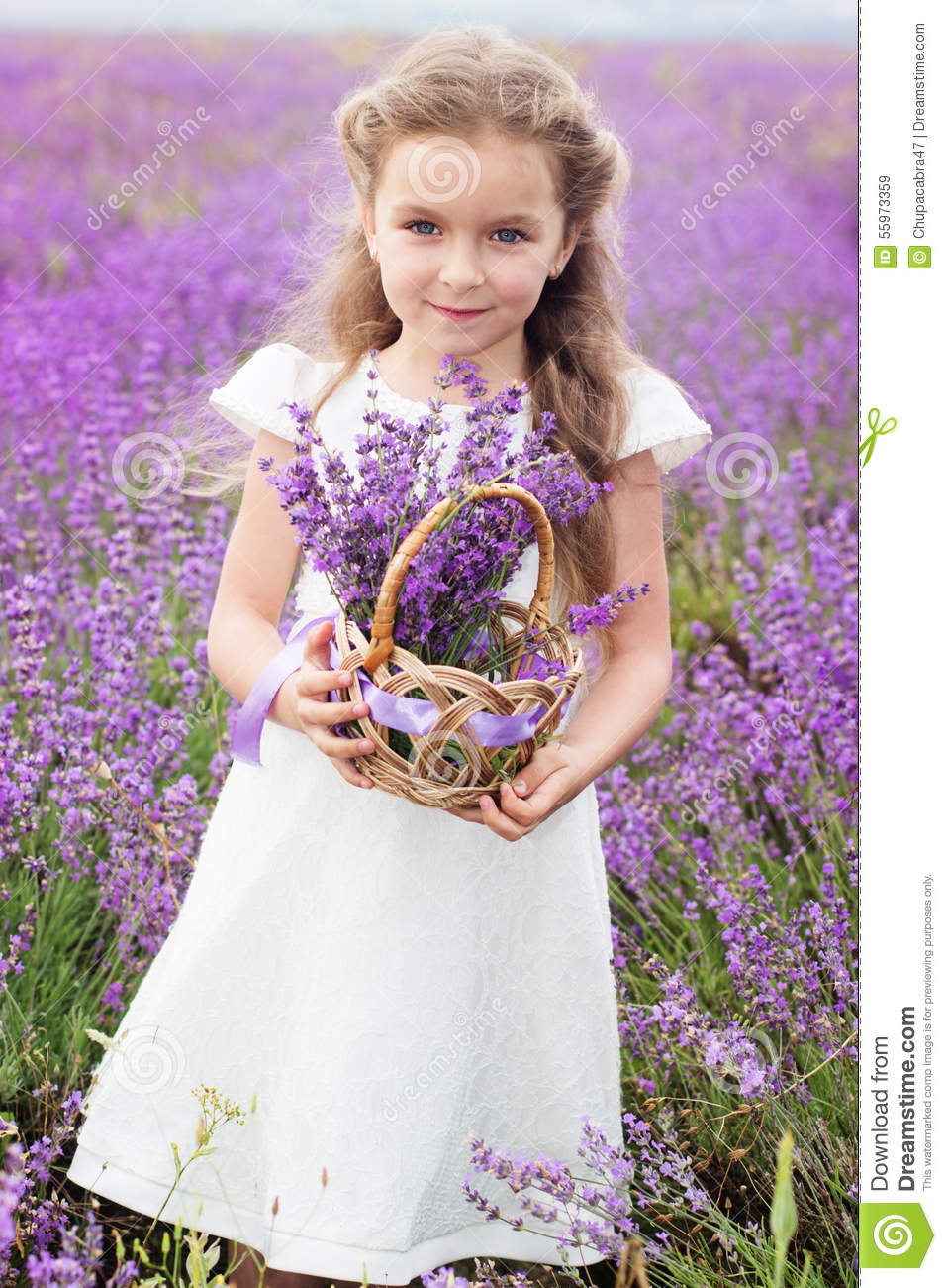 Pretty Child Girl In Lavender Field With Basket Of Stock Image