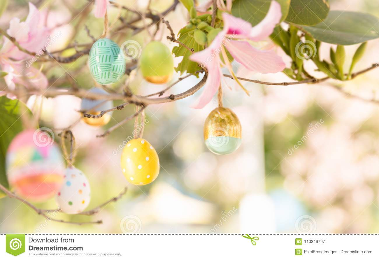 Pretty decorated Easter eggs hanging on a tree branch on a sunny