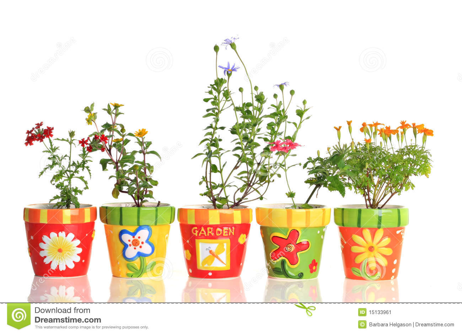 Pretty flower pots stock image Image of ceramic
