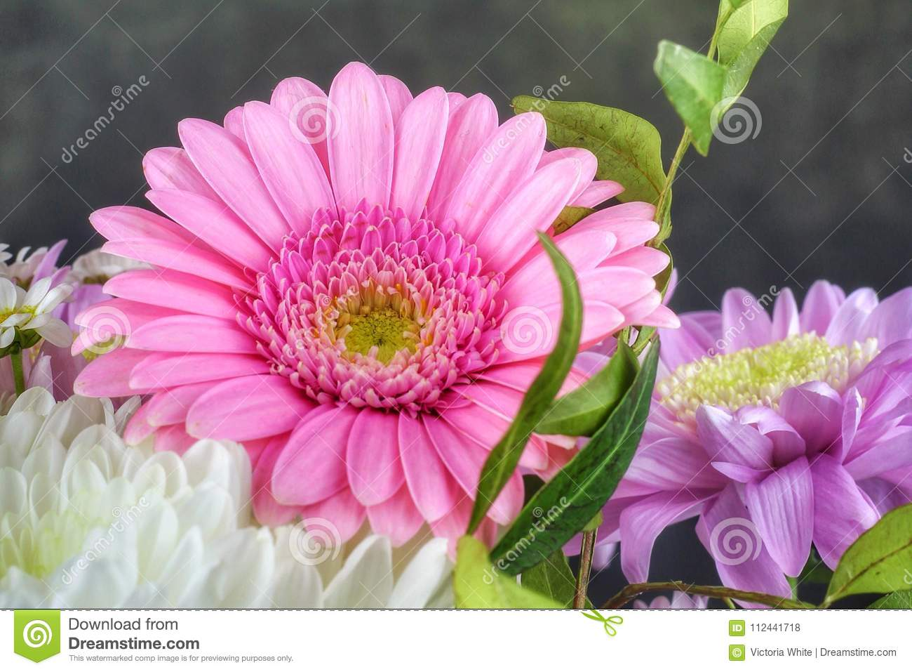 Pretty Flowers Stock Photo Image Of Pretty Colourful 112441718