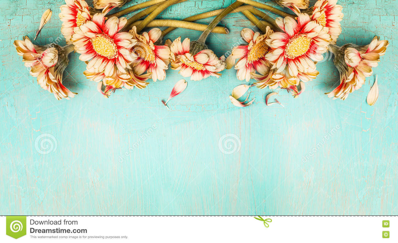 Pretty Flowers On Turquoise Shabby Chic Background Top View Border