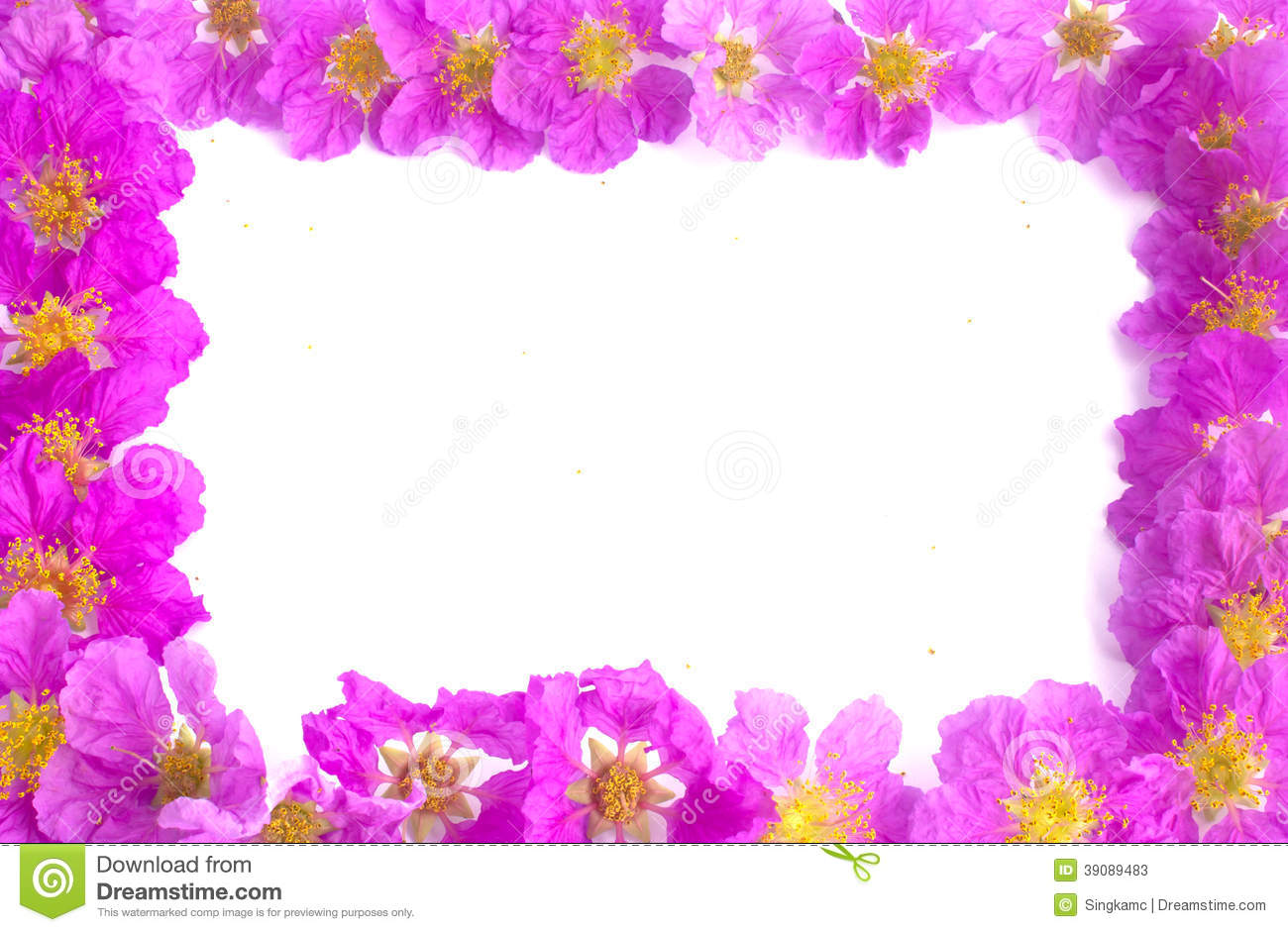 Pretty Frame From Purple Flowers Stock Image - Image of style, nice ...