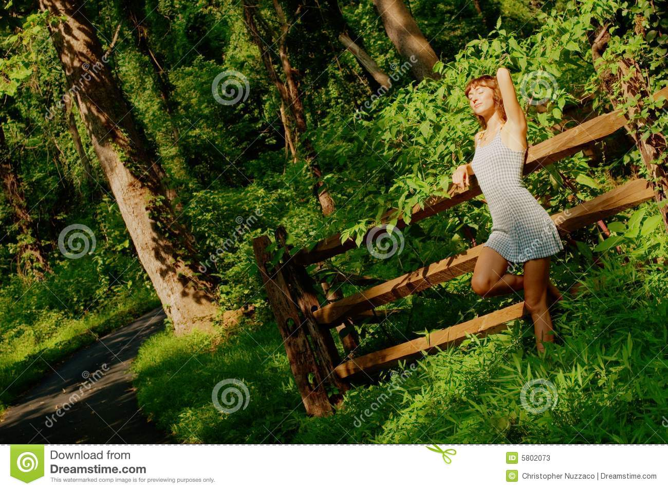 pretty girl in woods stock photos   image 5802073