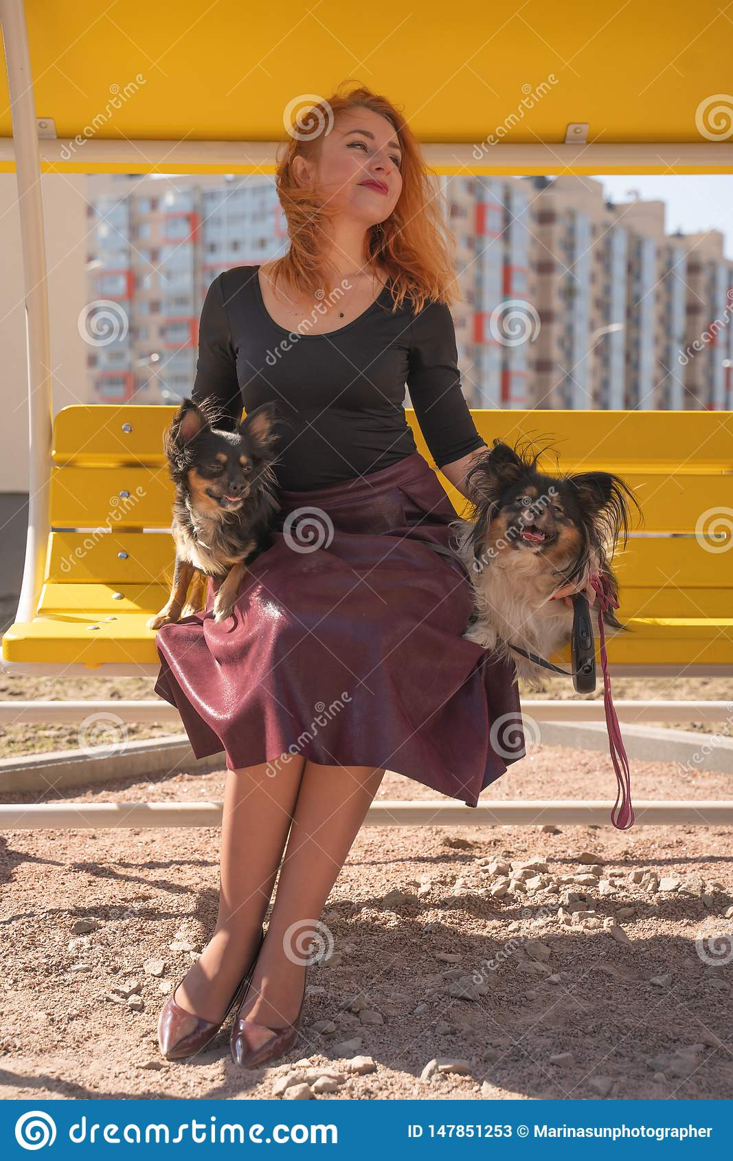 Pretty happy redheaded woman with two little dogs on the yellow summer bench