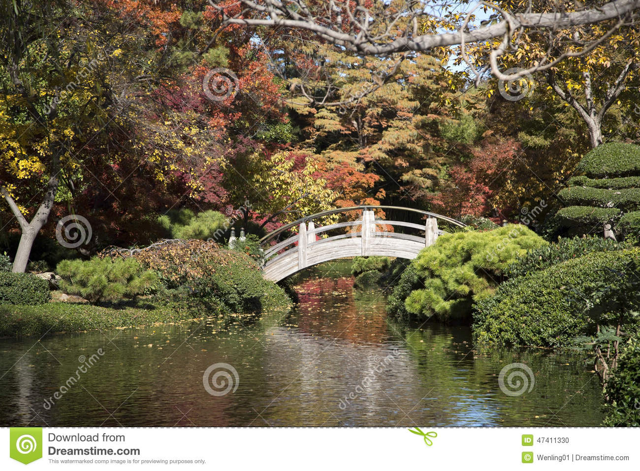 Pretty Japanese Garden Autumn Stock Photo - Image of worth, autumn ...