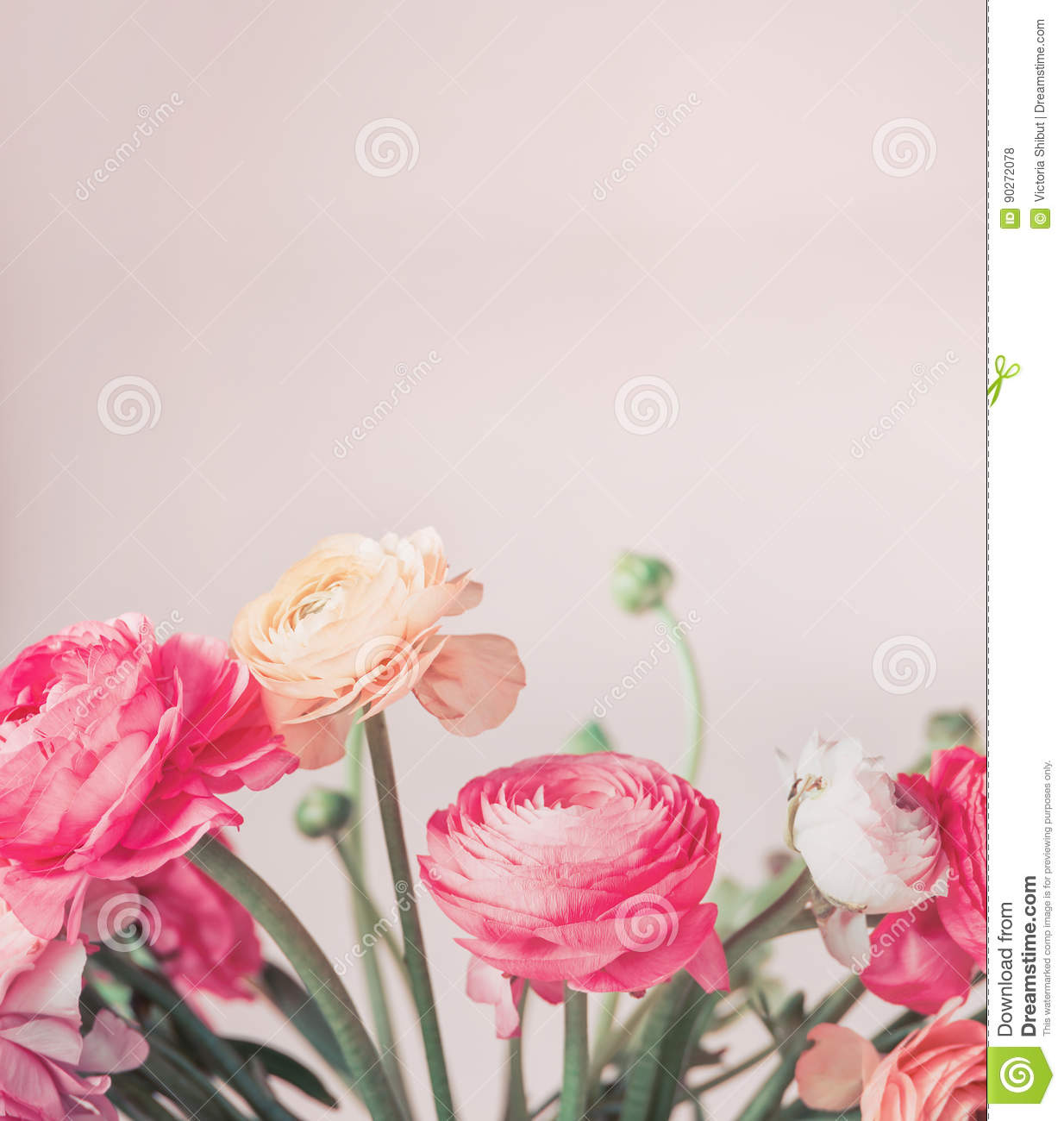 Super Pretty Pastel Color Flowers Blooming At Light Background, Floral  NH96