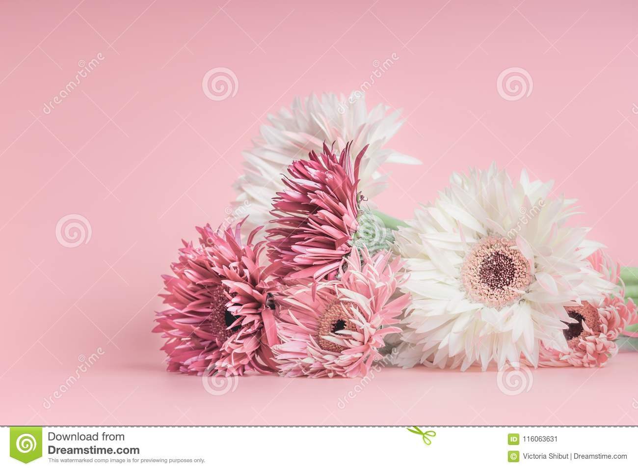 Pretty Pastel Flowers Bunch On Pink Stock Image Image Of Beautiful