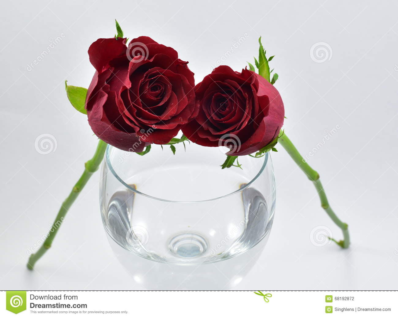 Pretty Red Roses Symbol Of Love And Wine Glass Stock Photo Image