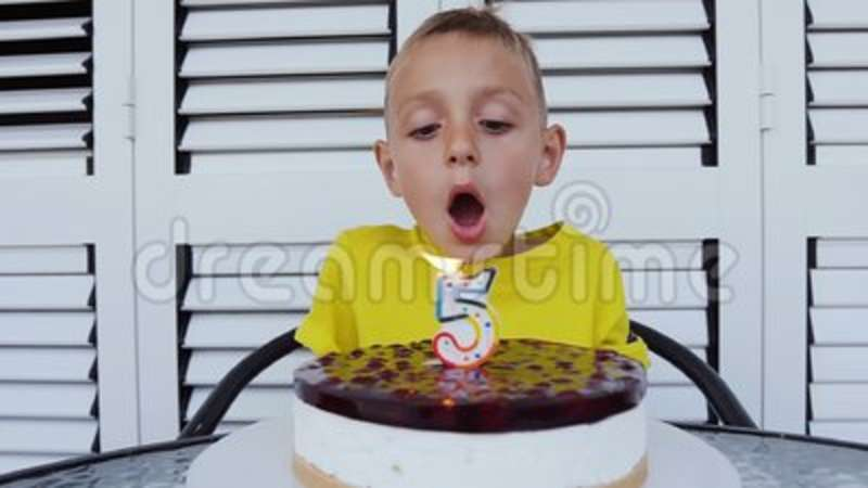 Pretty Small Boy Makes A Wish For A Birthday And Blowing A Candle On