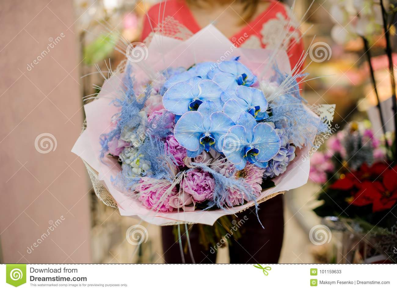 Pretty winter bouquet of blue and pink flowers stock image image download pretty winter bouquet of blue and pink flowers stock image image of blooming mightylinksfo