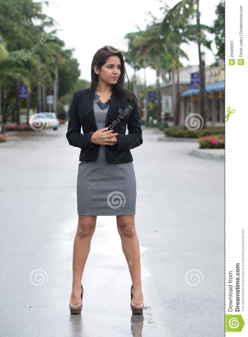 Pretty Woman In Black Jacket And Gray Dress. Stock Image - Image ...