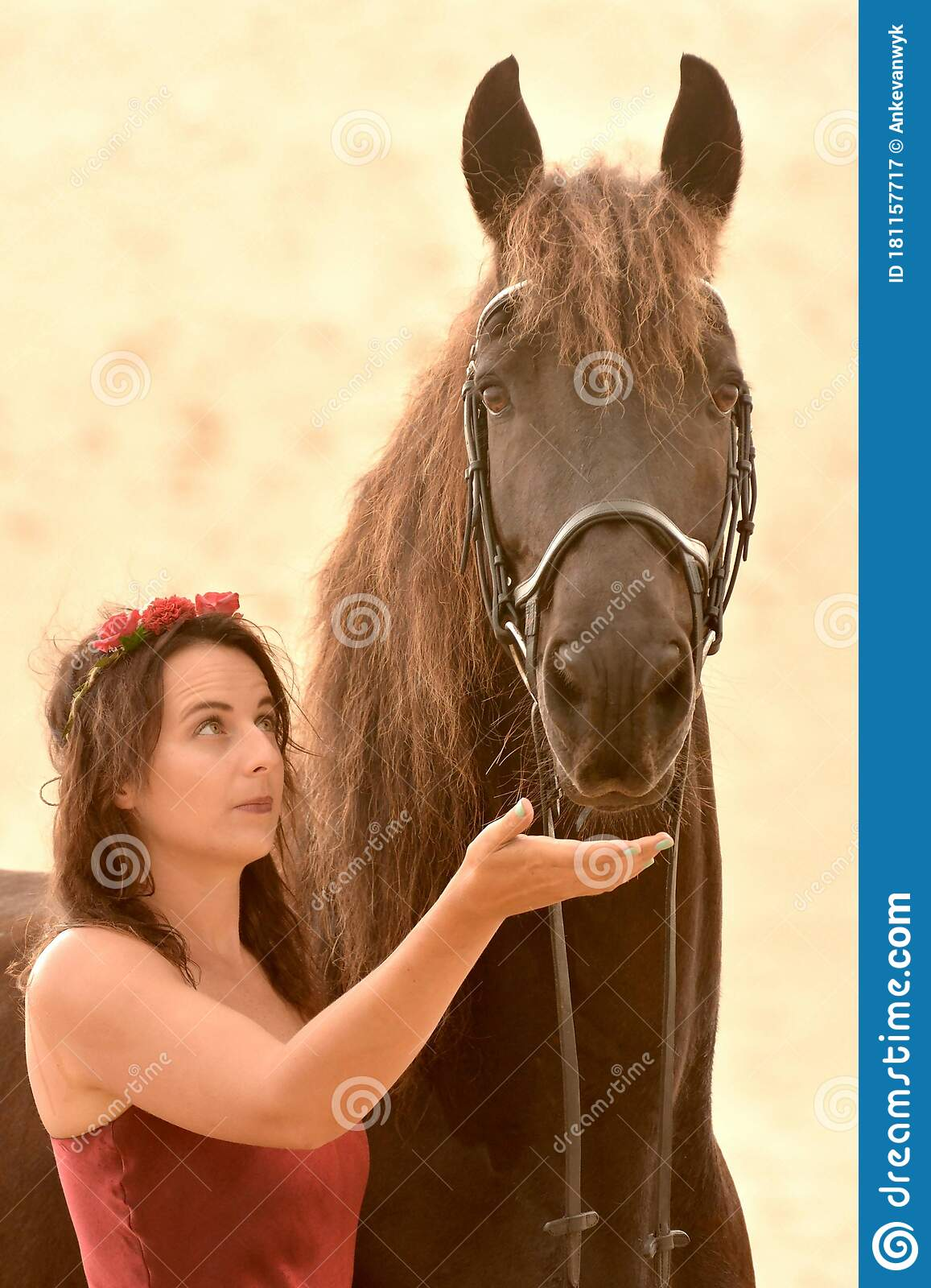 Pretty Woman Looking At Her Black Horse Stock Image Image Of Conceptual Friends 181157717