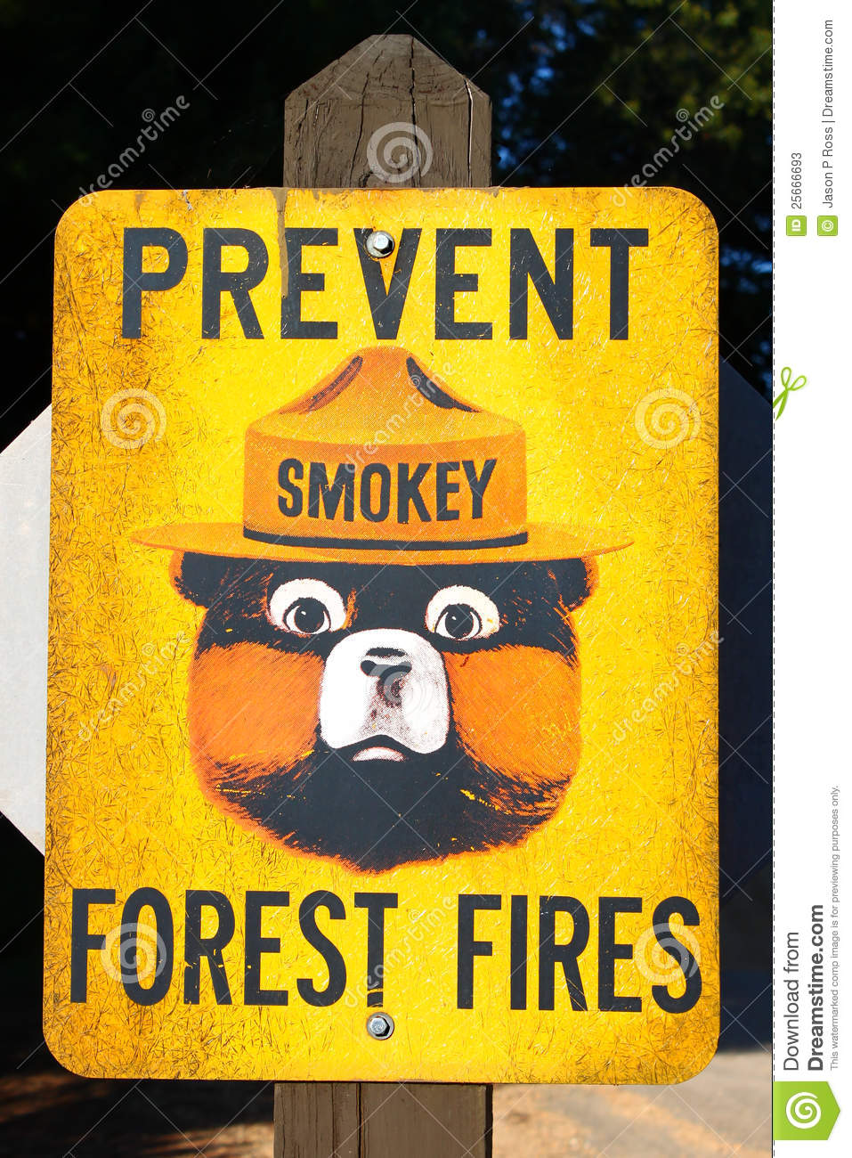 preventing forest fires Stopping recurring fires and protecting indonesia's communities, businesses, and  forests requires a proactive plan to prevent future fires, or at.