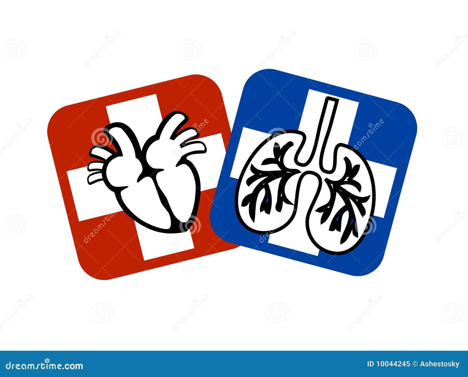 Prevenzione dei polmoni e del cuore illustrazione for Clipart cuore