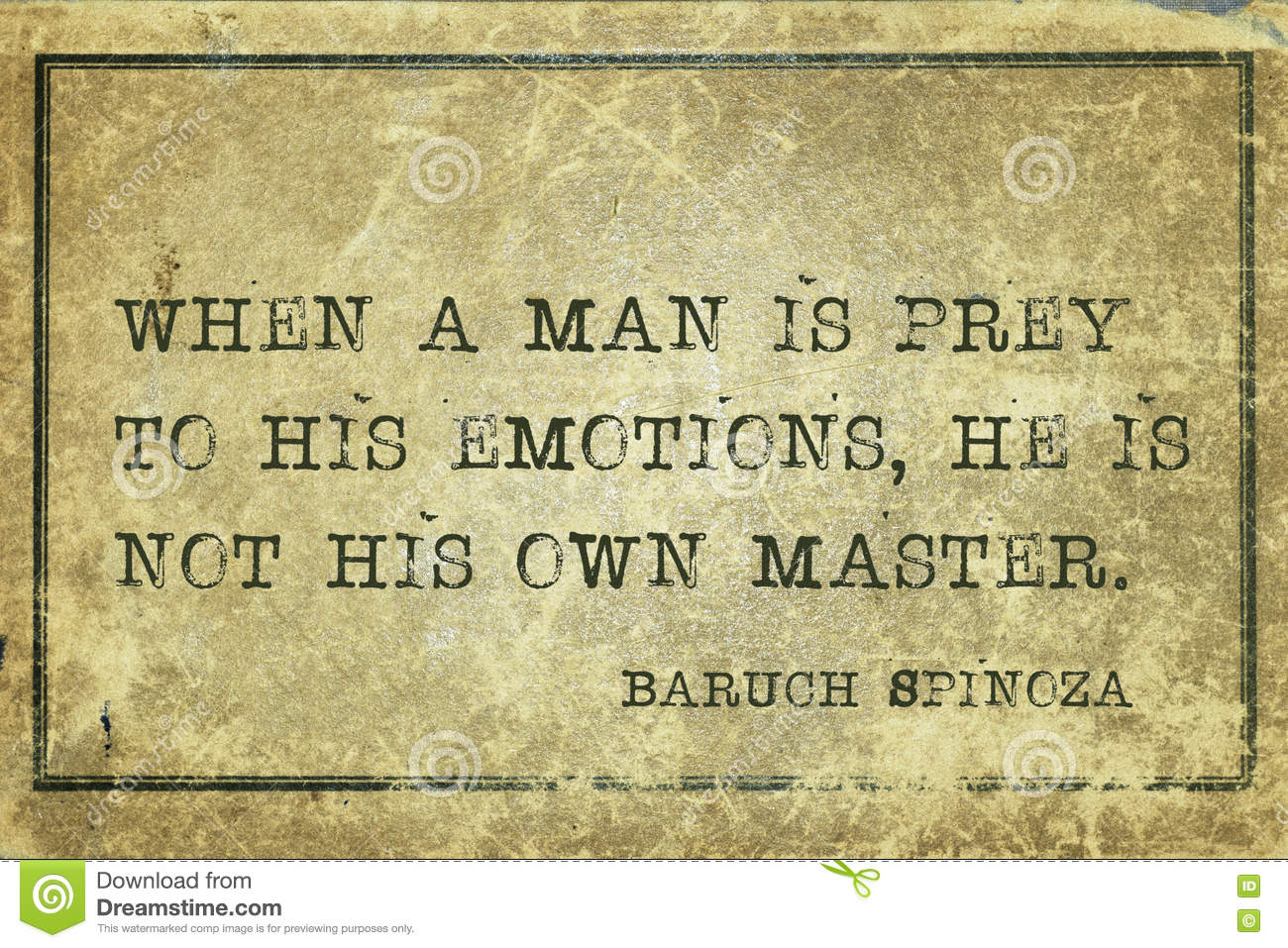 spinoza emotions