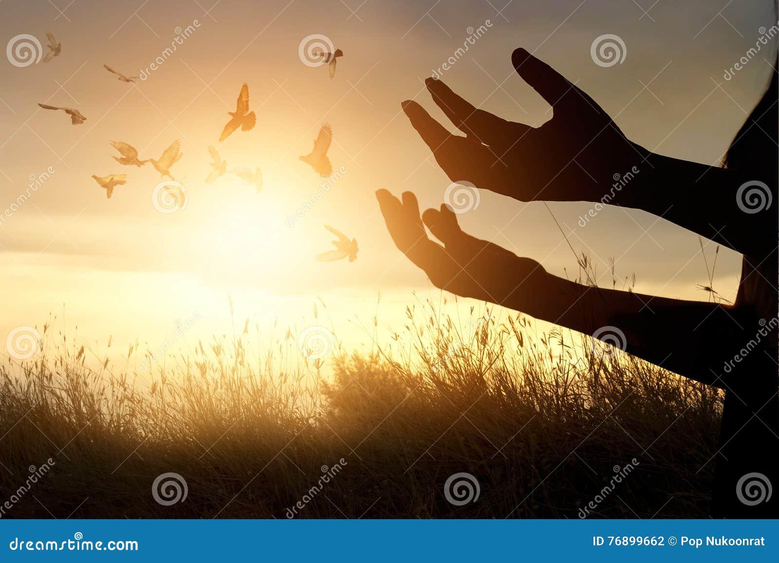 Pri re de femme et oiseau gratuit appr ciant la nature sur for Photo la nature gratuit