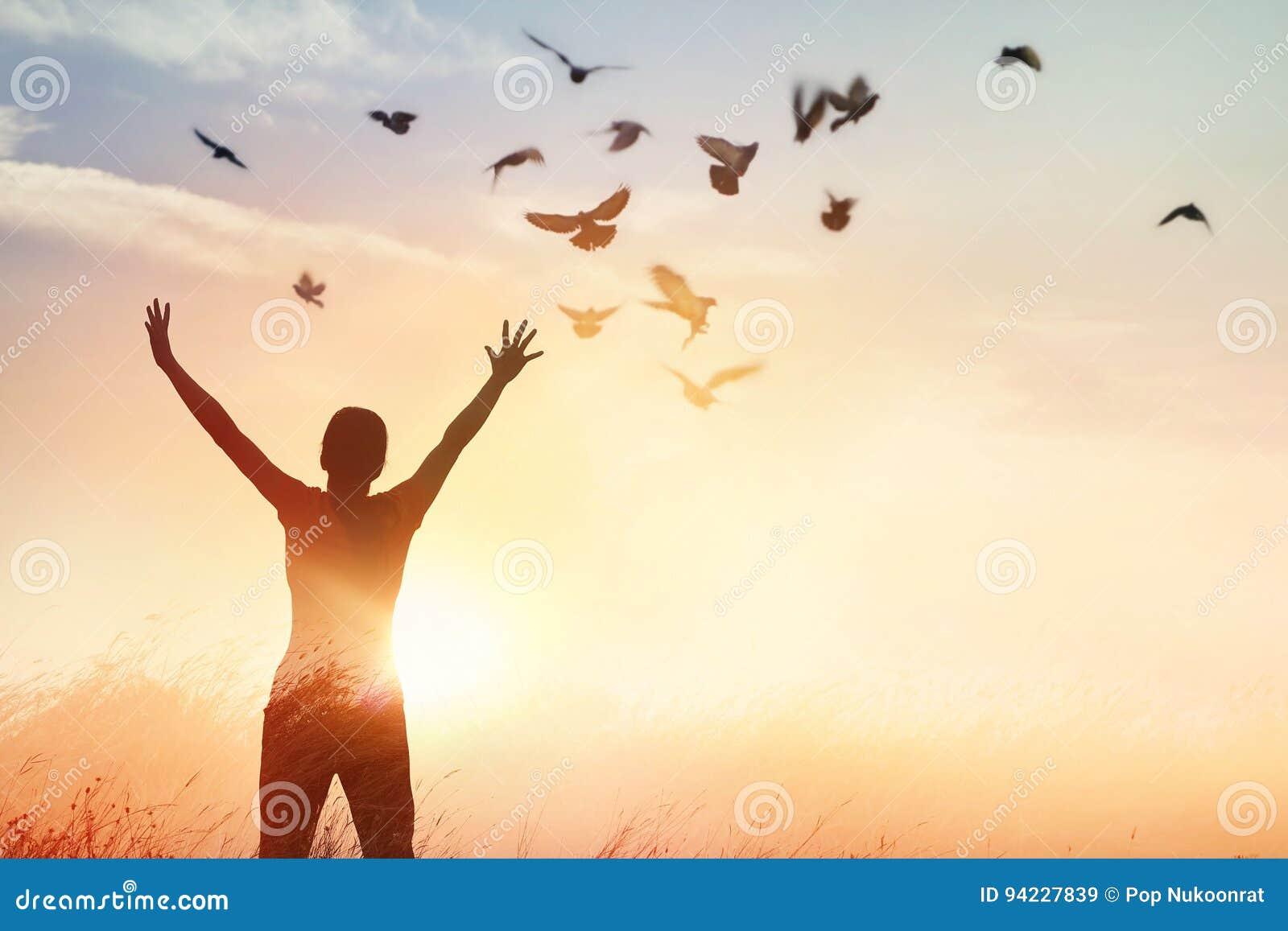 Prière de femme et oiseau gratuit appréciant la nature sur le fond de coucher du soleil