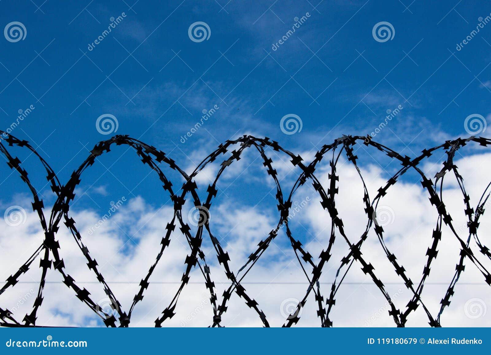 Prikkeldraad tegen de blauwe hemel Het symboliseert verbod of verantwoordelijkheid voor niet-vervulling van vereisten