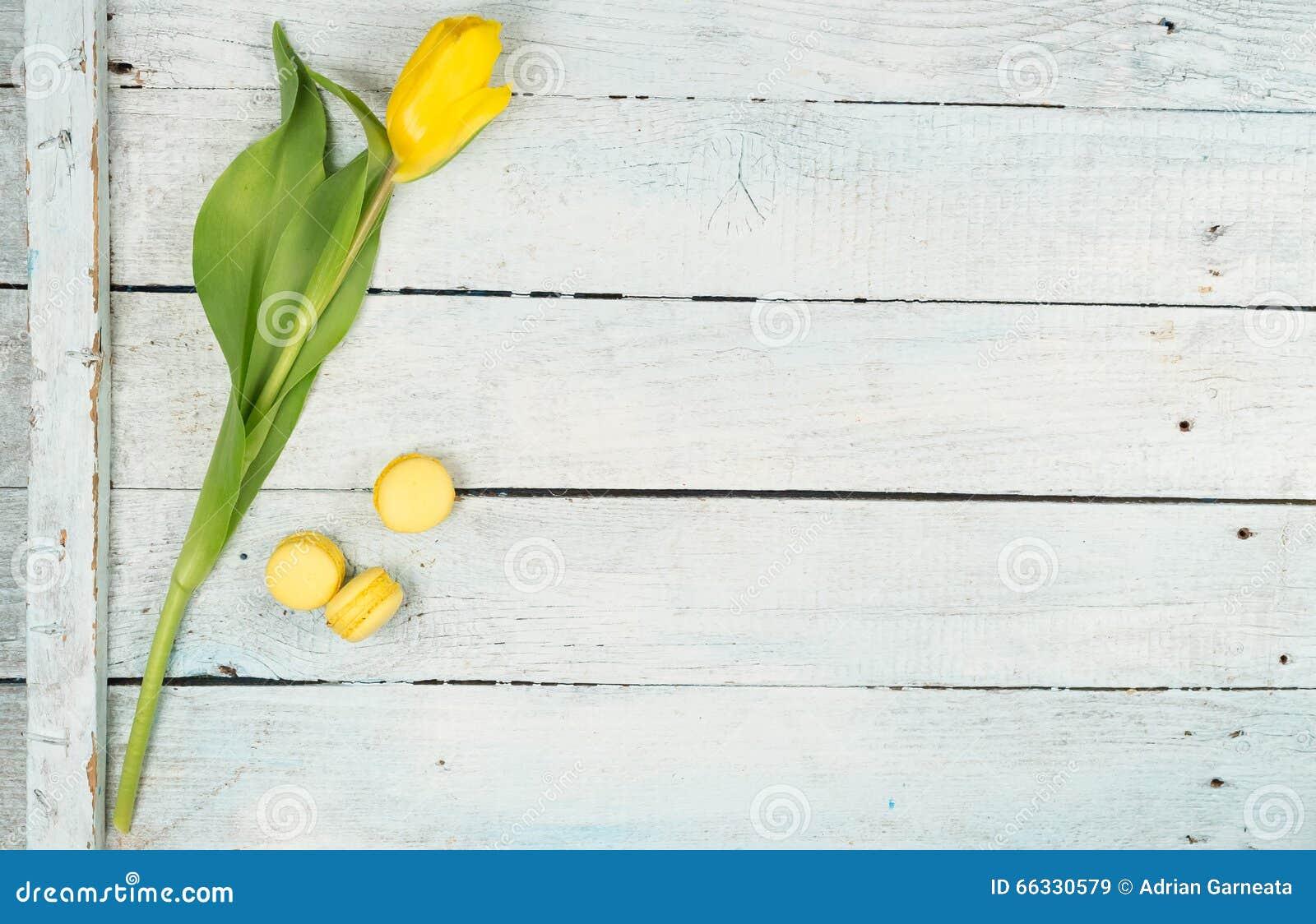 Primavera con el fondo amarillo de los tulipanes