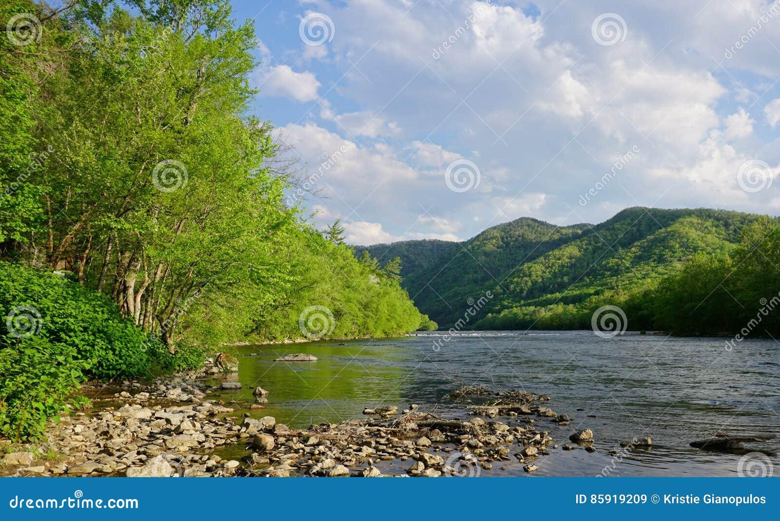 Primavera lungo il vasto fiume francese nella Nord Carolina delle sorgenti di acqua calda