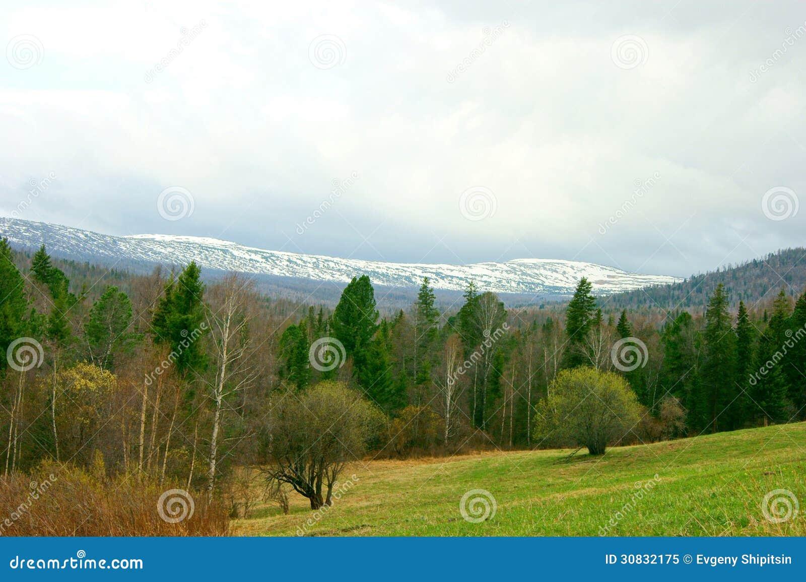Primavera in montagna Altai