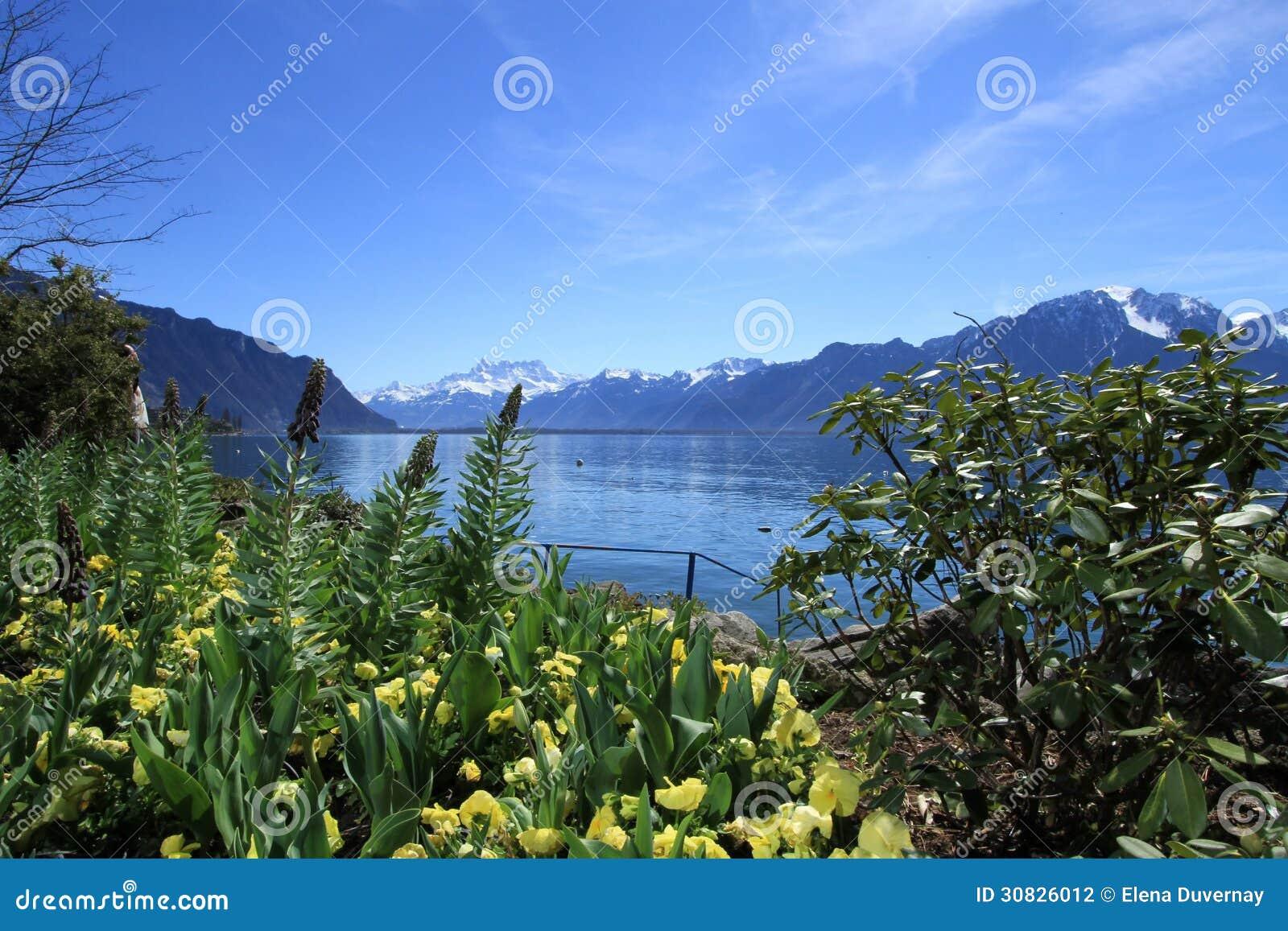 Primavera nel lago geneva, Montreux, Svizzera
