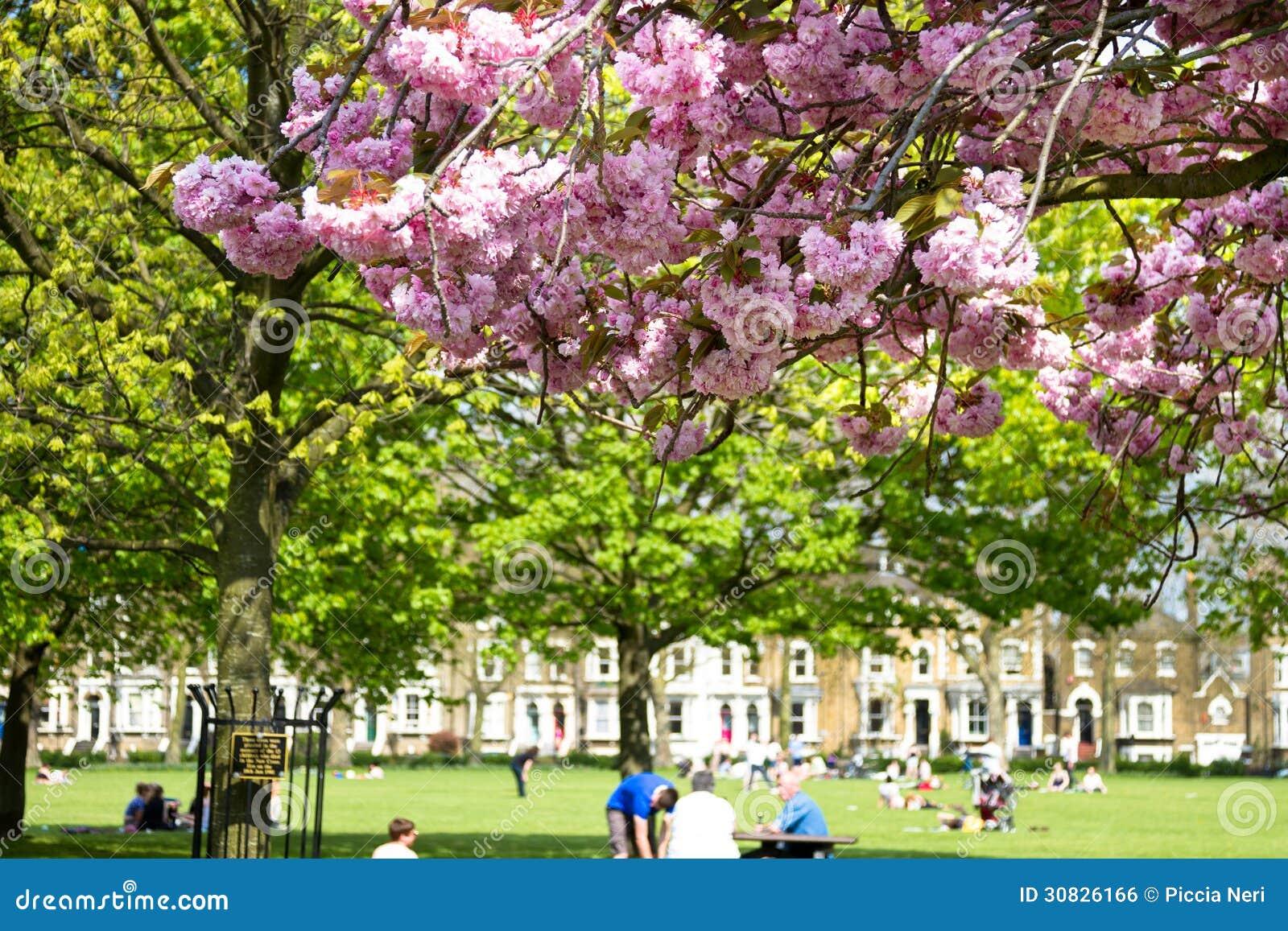 Primavera nella città