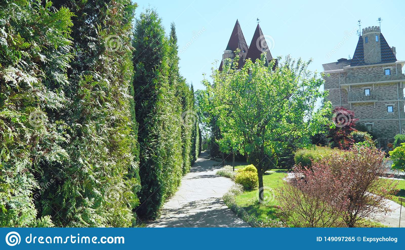Primeira pessoa vista Caminhada ao longo das ?rvores ao longo de um trajeto em um parque bonito em um dia de ver?o ensolarado