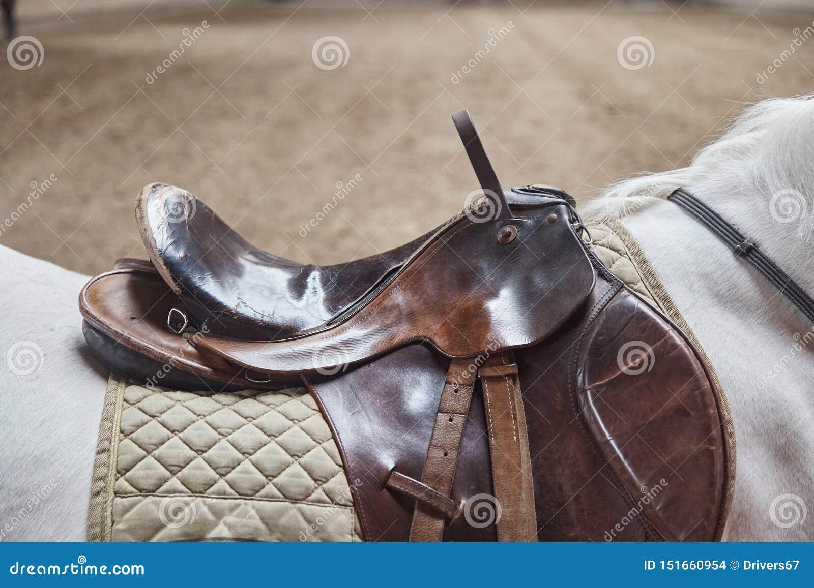 Primer de cuero de la silla de montar del caballo Para el jinete