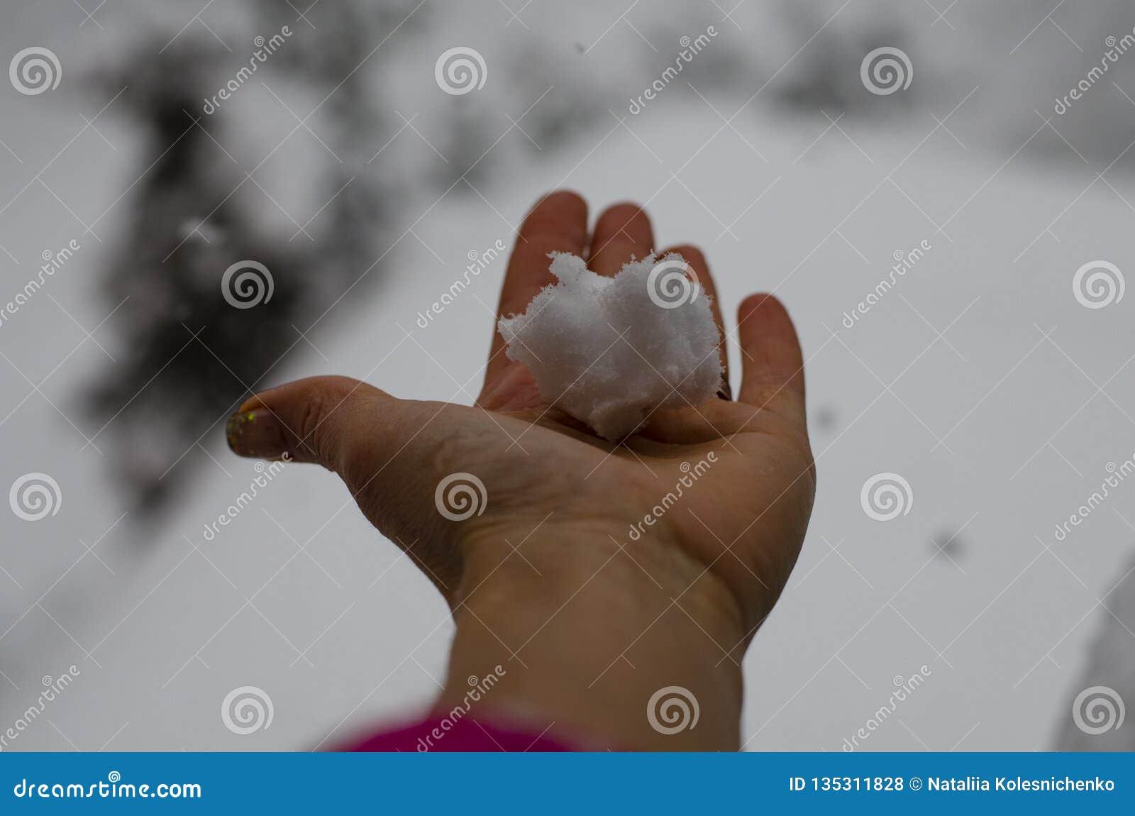 Primer de la mano de una mujer que sostiene una torta de la nieve contra la perspectiva de una nevada y de una ventisca fuertes