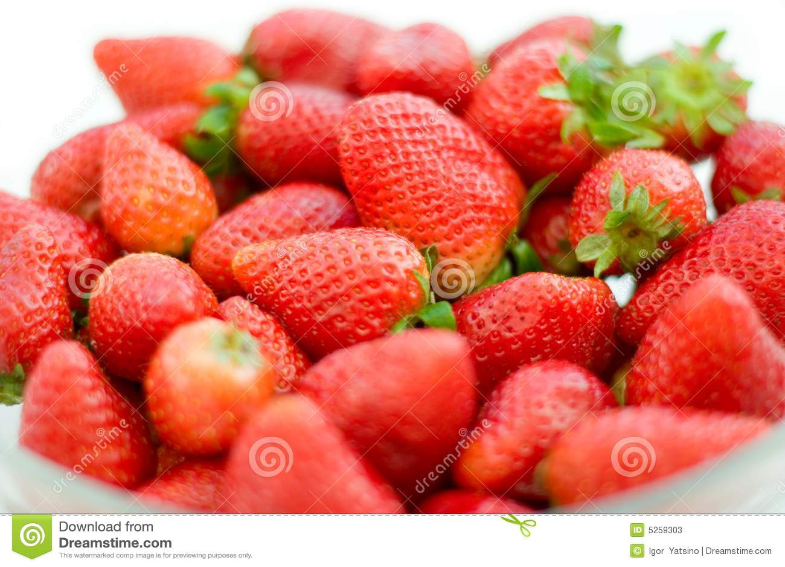 Primer de las fresas