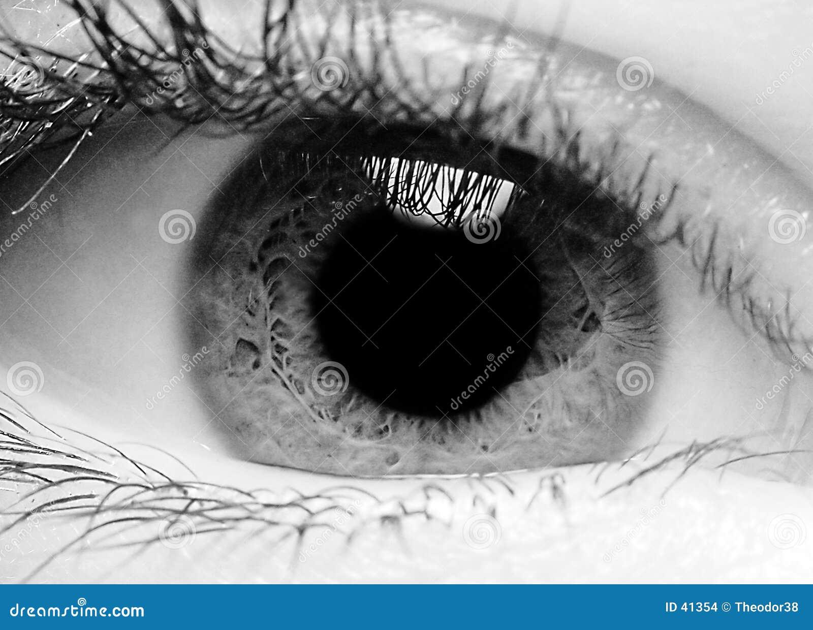 Download Primer de un ojo foto de archivo. Imagen de persiana, pupila - 41354
