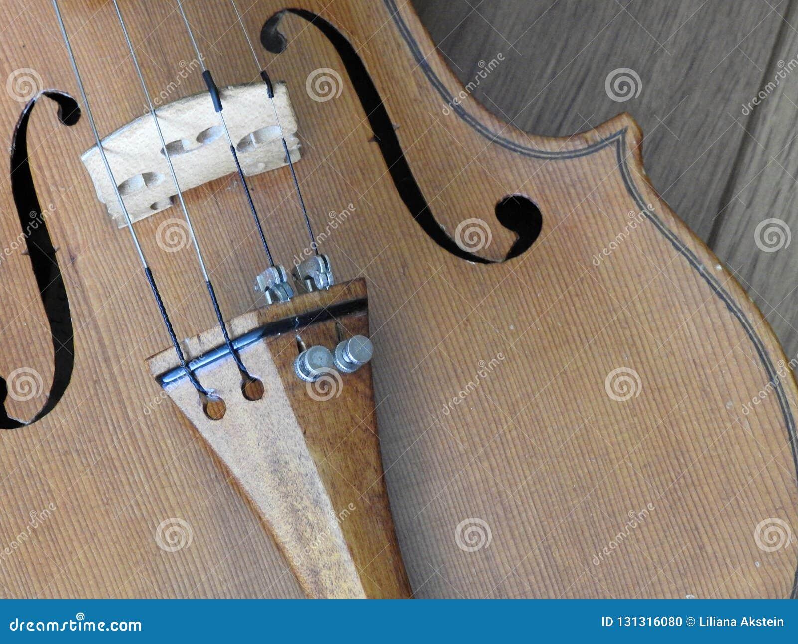 Primer de un violín, un instrumento de madera de la secuencia