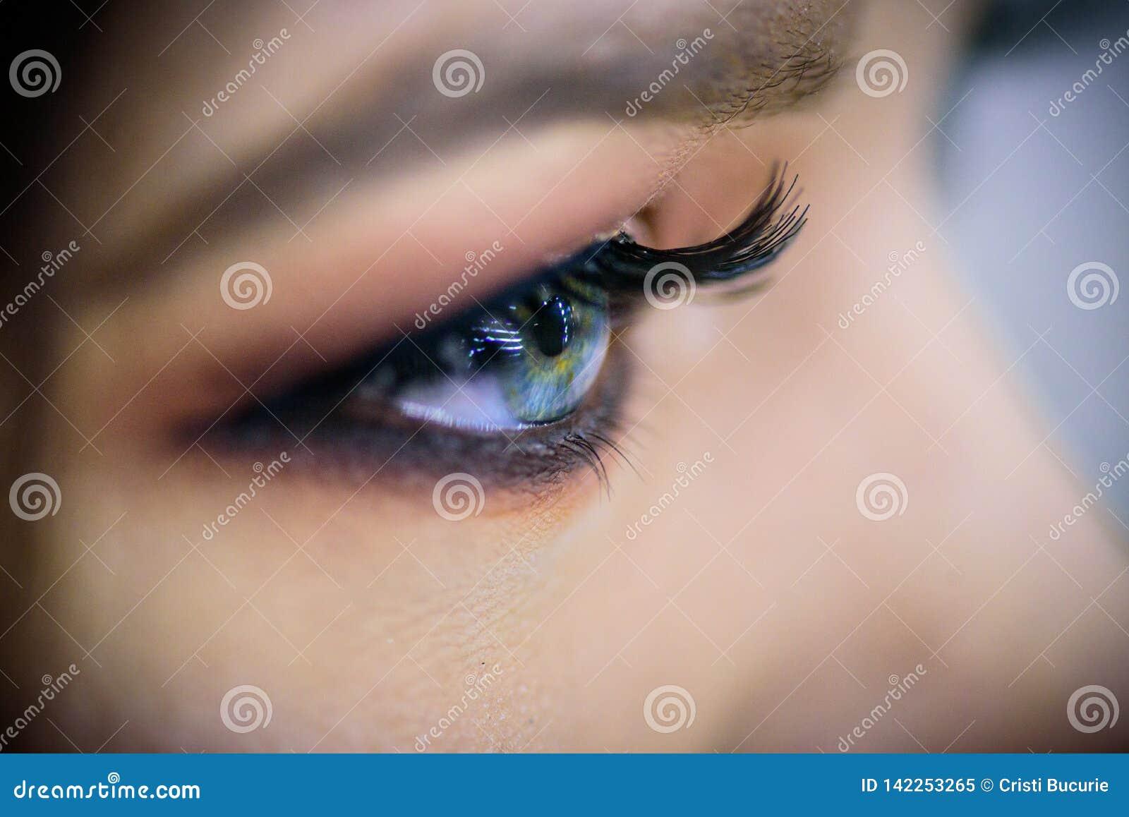 Primer hermoso del ojo azul Ojos de la moda del maquillaje